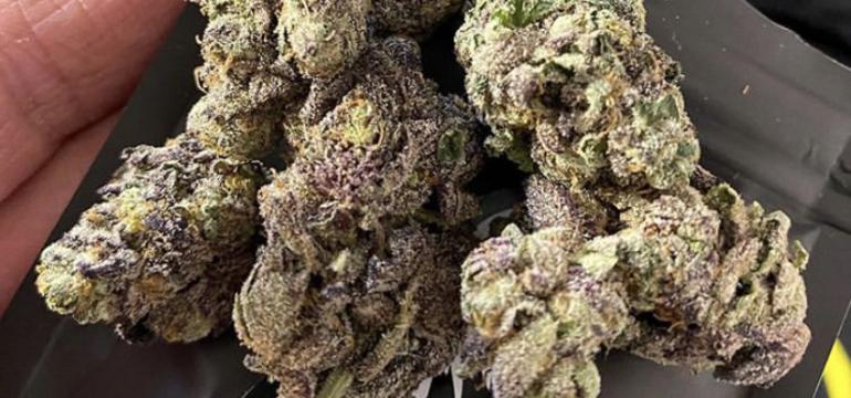 Buy Cannabis Online Charleroi Buy Weed online in Charleroi Buy Marijuana Online Charleroi Buy THC Vape juice online Charleroi Buy THC Vape Online Charleroi.